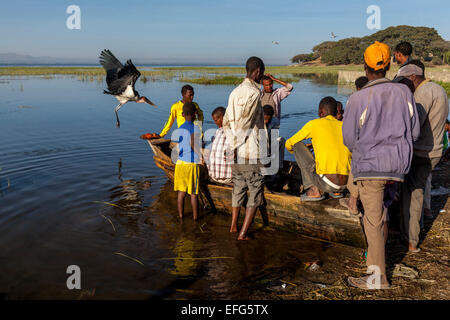 Local Fishermen Arrive Back With The Days Catch, The Fish Market, Lake Hawassa, Hawassa, Ethiopia - Stock Photo