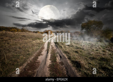 Country road under round moon at the night. Elements of this image furnished by NASA - Stock Photo