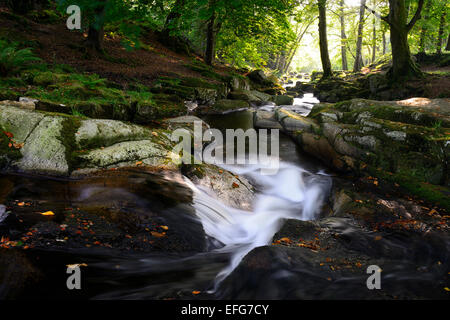 Cloghleagh River waterfall summer rural scene scenic irish sidelit sidelighting County Wicklow RM Ireland - Stock Photo