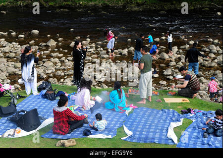 Families having a picnic on the River Wharfe, in the grounds of Bolton Abbey, Skipton West Yorkshire - Stock Photo
