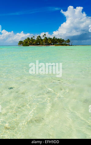 Uninhabited or desert island in the Blue Lagoon inside Rangiroa atoll, an island of the Tahiti archipelago French - Stock Photo