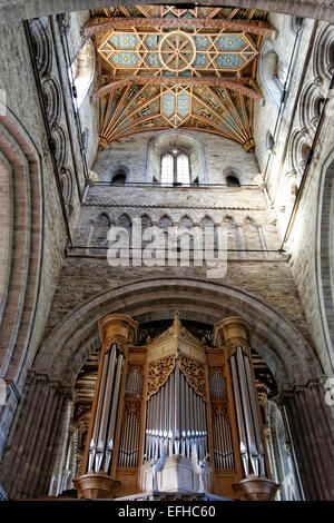 St Davids Cathedral (Welsh Eglwys Gadeiriol Tyddewi), is situated in St Davids in the county of Pembrokeshire organ - Stock Photo