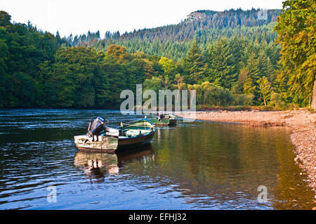 Two rowing boats for salmon fishing anchored by the river bank, River Tay,  Dunkeld, calm sunny autumn morning, - Stock Photo