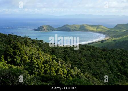 Sweeping bay at Port Jackson, Coromandel Peninsula, North Island, New Zealand - Stock Photo
