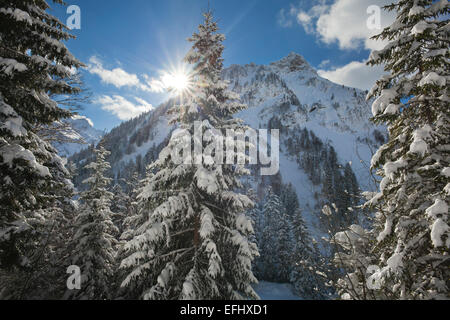 Winter landscape in Hintersteiner valley near Bad Hindelang, view to Giebel, Allgaeu, Bavaria, Germany - Stock Photo