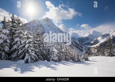 Winter landscape at Hintersteiner Tal, near Bad Hindelang, view to Giebel, Allgaeu, Bavaria, Germany - Stock Photo