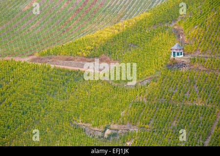 View from Landshut castle to vineyards above Bernkastel-Kues, Mosel, Rhineland-Palatinate, Germany, Europe - Stock Photo