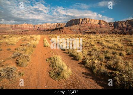Marble Flat near Grand Canyon, Arizona, Southwest USA - Stock Photo