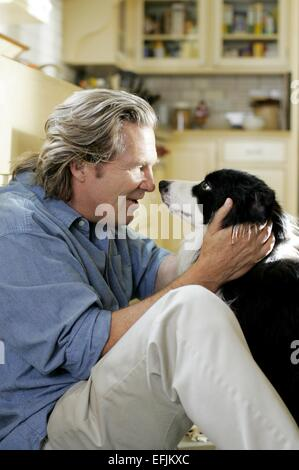 JEFF BRIDGES A DOG YEAR (2009) - Stock Photo