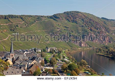 Steep slopes of Uerig with vineyard Ueziger Wuerzgarten, Uerzig, Rheinland-Pfalz, Germany - Stock Photo