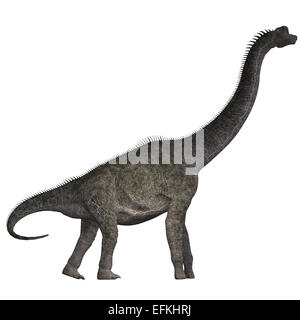Brachiosaurus was a herbivorous dinosaur that lived in the Jurassic Era of North America. - Stock Photo