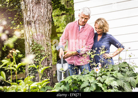 Husband and wife watering plants in garden - Stock Photo