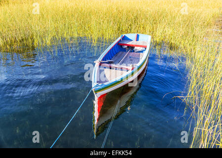 Colorful boat surrounded by reeds on Lake Titicaca near Copacabana, Bolivia - Stock Photo