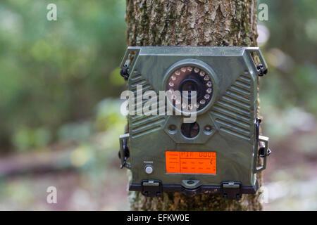 Trail Camera - Stock Photo