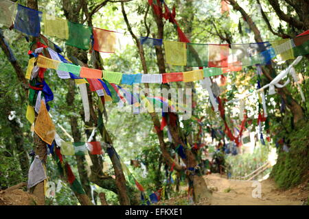 Buddhist prayer flags waving in the wind in the forest on the rear side of the 1978 AD-V.V.Khenchen Thrangu Rinpoche - Stock Photo