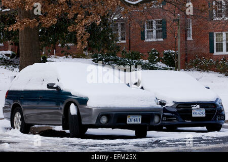 Parked cars covered in snow - Virginia USA - Stock Photo