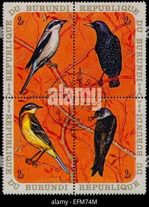 BURUNDI - CIRCA 1970: A set of four stamps printed in Burundi, shows a birds Great Grey Shrike, Common Starling, - Stock Photo