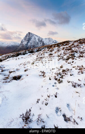 Tracks left behind by a mountan hare in the snow on Beinn a'Chrulaiste serve as a great lead in towards the Buachaille - Stock Photo