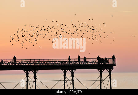 Aberystwyth, Wales, UK. 7th February, 2015. UK weather.  As the sun sets after a perfect winter day, part of a large - Stock Photo