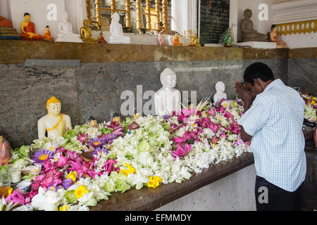 Devotee worship with lotus leaf and flower offerings at sacred bo,bodhi,tree,temple Buddhist,Anuradhapura,Sri Lanka,Asia. - Stock Photo