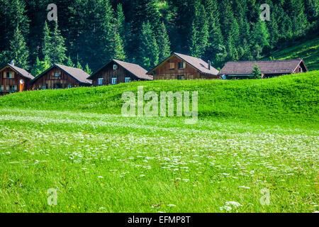 Wooden houses in Steg, Malbun, in Lichtenstein, Europe - Stock Photo