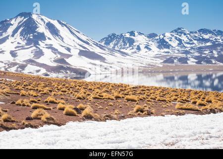 Miniques Volcano and lagoon in San Pedro de Atacama desert, Chile, South America - Stock Photo