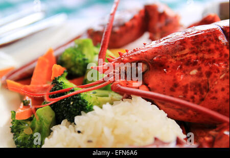A cooked lobster on a plate with vegetables. - Stock Photo