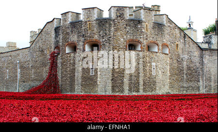 The art installation 'Blood Swept Lands and Seas of Red' in commemoration of the First World War Centenary at the - Stock Photo