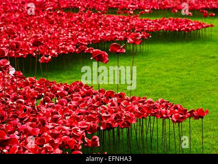 View of the art installation 'Blood Swept Lands and Seas of Red' in commemoration of the First World War Centenary - Stock Photo