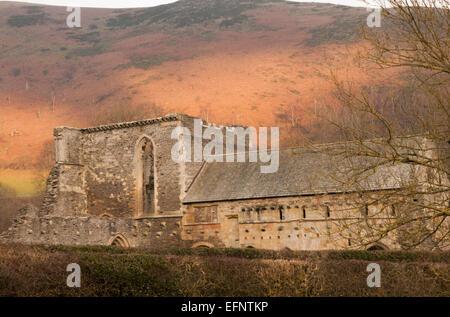 Evening light, Valle Crucis Abbey, Cistercian Abbey, Llangollen, Denbighshire, Wales, United Kingdom - Stock Photo