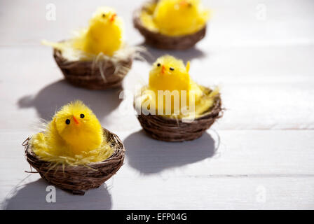 Four Easter Baskets Or Nests With Yellow Feathers And Four Easter Chicks In Sunny Light With Copy Space Free Text - Stock Photo