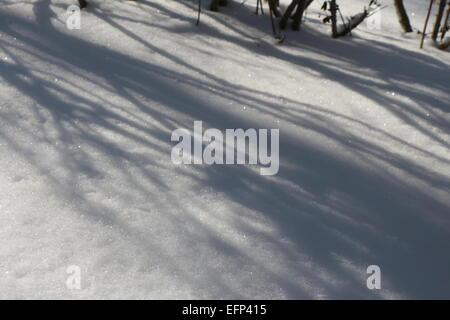 A SHADOW OF LIGHT CASTING ON THE SNOW.SHADOWS IN WINTER SNOW. - Stock Photo