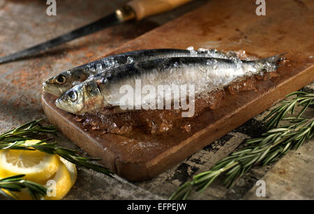 Still life of fish on chopping board with lemon slice and rosemary - Stock Photo