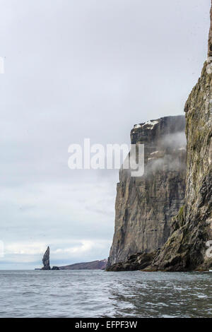 Steep cliffs filled with nesting birds on the south side of Bjornoya (Bear Island), Svalbard, Norway, Scandinavia, - Stock Photo