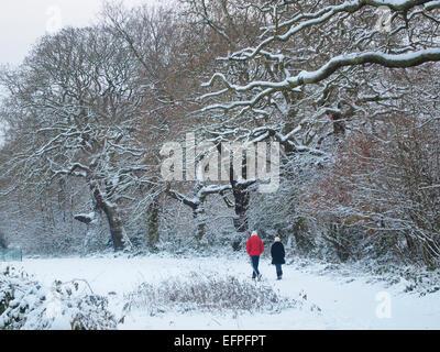 Hampstead Heath in snow, London, England, United Kingdom, Europe - Stock Photo