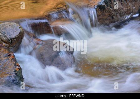 Water running over rocks in a brook in autumn, Ilse mountain brook, Ilsenburg, Saxony-Anhalt, Germany - Stock Photo