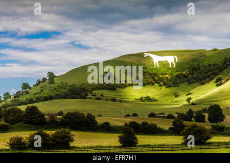 The White Horse below Bratton Camp, an Iron Age hillfort near Westbury in Wiltshire. - Stock Photo