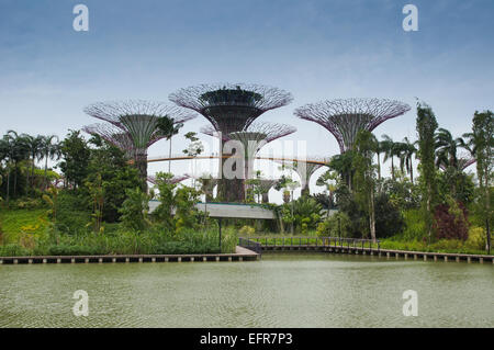 city emerald landscape at singapores gardens by the bay stock photo - Garden By The Bay Water Park