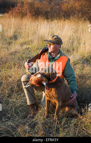 A bird hunter and his trained dog with a dead pheasant in its mouth. Retriever. - Stock Photo