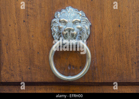 Typical metal door knocker on a wooden door, with the image of a lion's face. - Stock Photo