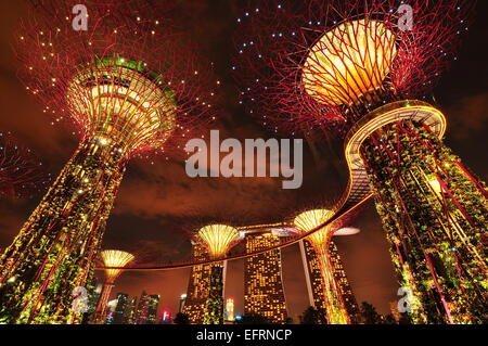 garden by the bay singapore stock photo