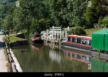 Narrowboats on the Kennet and Avon Canal in summer - Stock Photo