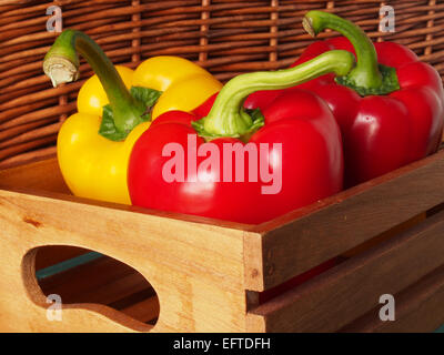 Red and yellow peppers grouped together in a wooden box for storage and transportation - Stock Photo