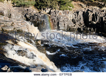 Low Force Waterfall, Upper Teesdale, Co Durham, UK. 10th February 2015. Low Force Waterfall on the River Tees on - Stock Photo