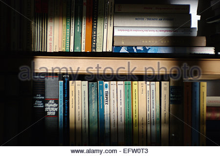 Book Books ON A SHELF bookshelf book shelf books scruffy A pile of Mode still life concept illustration pile old - Stock Photo