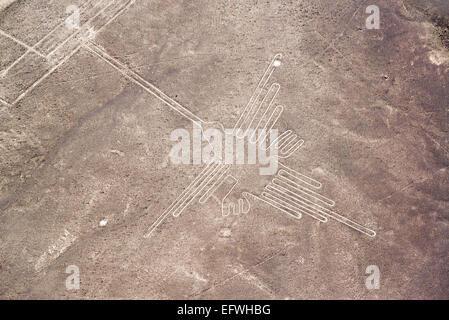 Nazca Lines hummingbird in Peru - Stock Photo