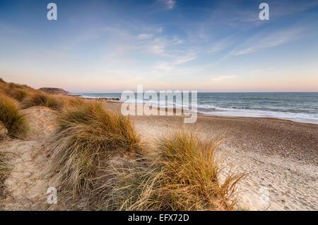 Sand dunes at Hengistbury Head beach near Christchurch in Dorset - Stock Photo