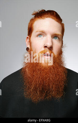 Studio portrait of young man with blue eyes, red hair and overgrown beard - Stock Photo