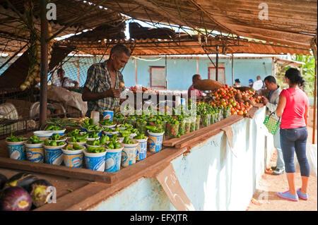 Street Food Localvore