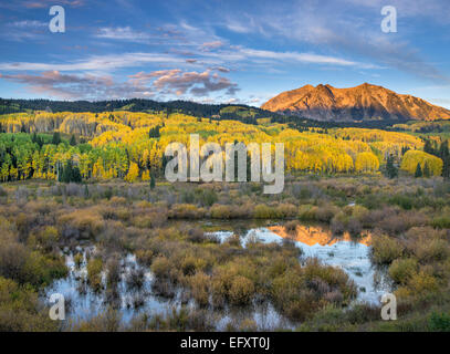 Gunnison National Forest, West Elk Mountains, CO: Sunrise light on East Beckwith Mountain, from a beaver pond near - Stock Photo